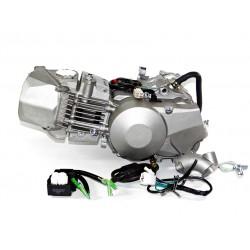 Silnik Daytona 190 ccm 4V FDX