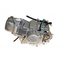 Silnik ZS 212 e-start